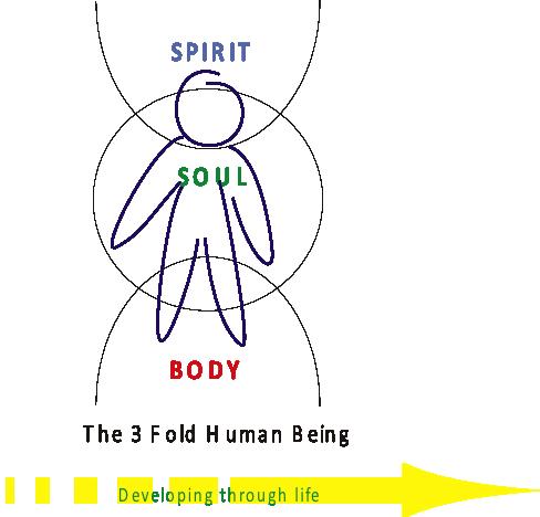 3 fold human being